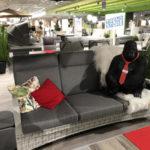 Bilder moebel heinrich garten sofa gorilla