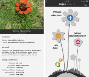Screenshots der App Flora Incognita